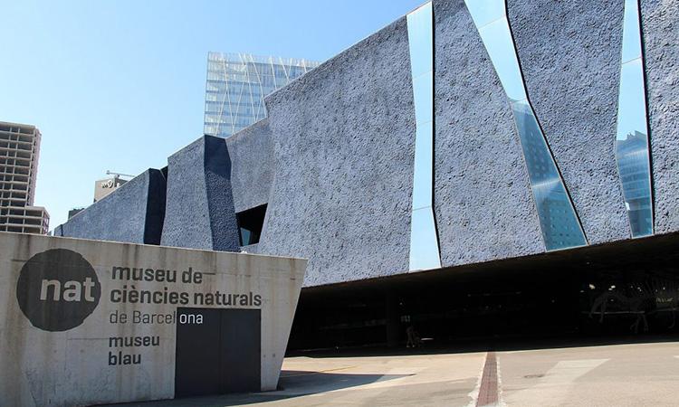 El Museu de Ciències Naturals licita la gestió de mitjans, publicitat i comunicació